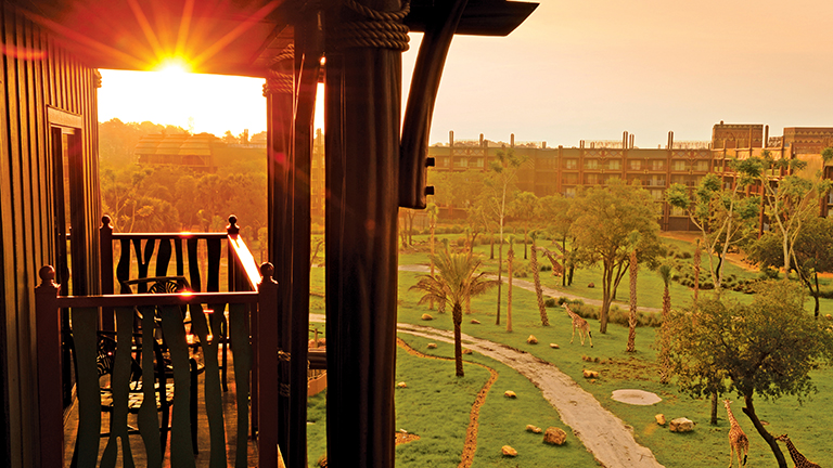 A beautiful sunset at Disney's Animal Kingdom Lodge